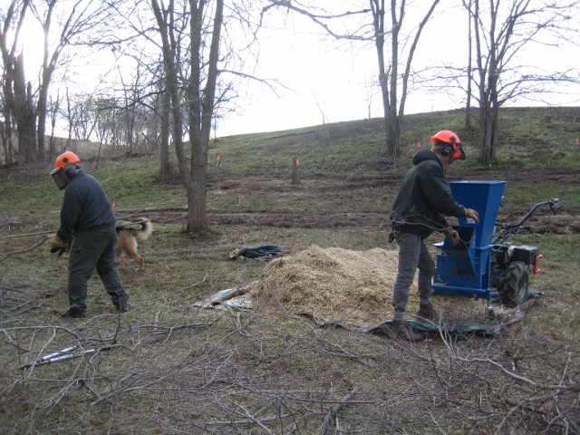 Paul and Billy chipping wood.