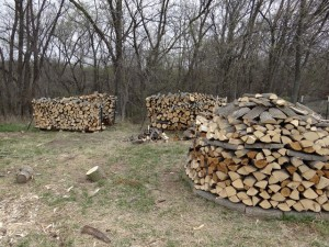 Firewood stacks and circle