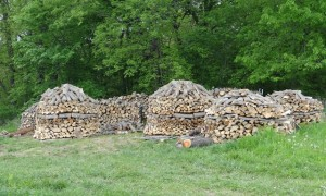 Firewood yurt village!